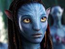 Avatar 2 na ceste