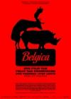 Belgica film poster