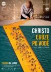 Christo: Chôdza po vode film poster