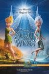 Cililing a tajomstvo krídiel film plakat