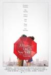 Daždivý deň v New Yorku  film poster