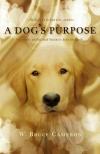 Psia duša film poster